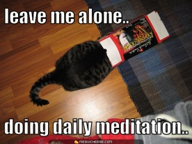 leave-me-alone-doing-my-daily-meditation-